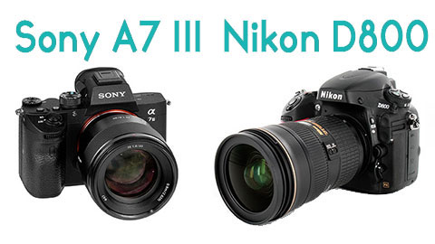 Sony A7 III Verse Nikon D800 Product Review